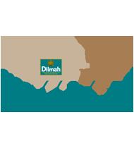 Global Dilmah Real High tea Challenge, Sri Lanka - 2015